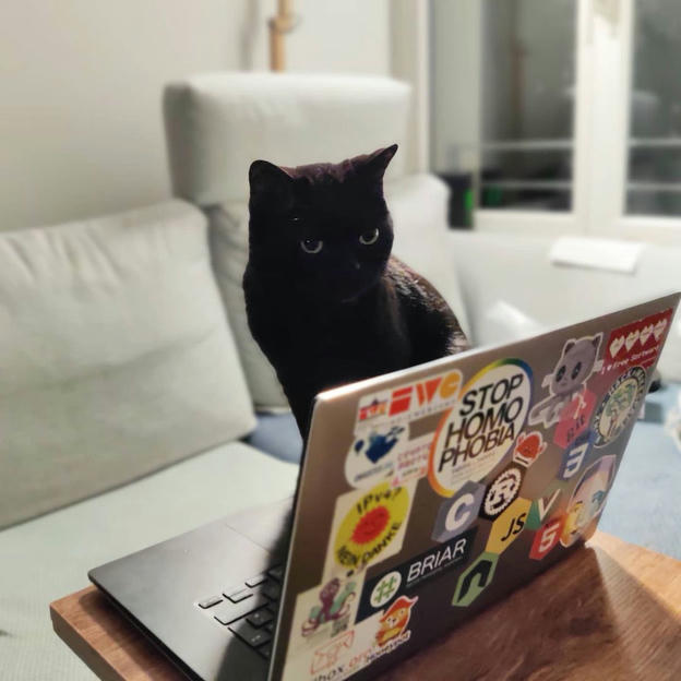 Photo shared by Coffee'n'Code on June 11, 2020 tagging @coderlifes, @lovecoders, @thedevlife, @programunity, and @codeclique.