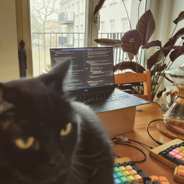 Photo shared by Coffee'n'Code on January 21, 2021 tagging @cats_of_instagram, @worldcode, @comment_sense, @falba.tech, @code.community, @coderlifes, @lovecoders, @codepeople, @programunity, @codeclique, and @_devcommunity. May be an image of food and laptop.