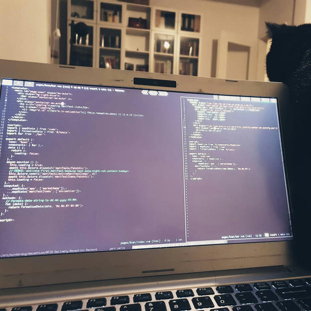 Photo shared by Coffee'n'Code on September 26, 2019 tagging @comment_sense, @wildcatliving, @coderlifes, @codingdays, @codeclique, and @papillonformen.al.
