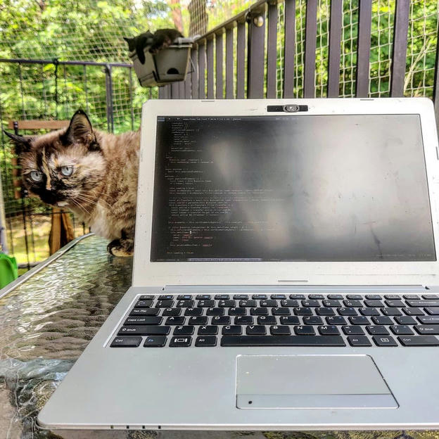 Photo shared by Coffee'n'Code on June 17, 2020 tagging @coderlifes, @webdeveloper.io, @programunity, and @codeclique.
